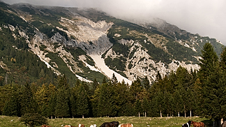 Surroundings of Jesenice